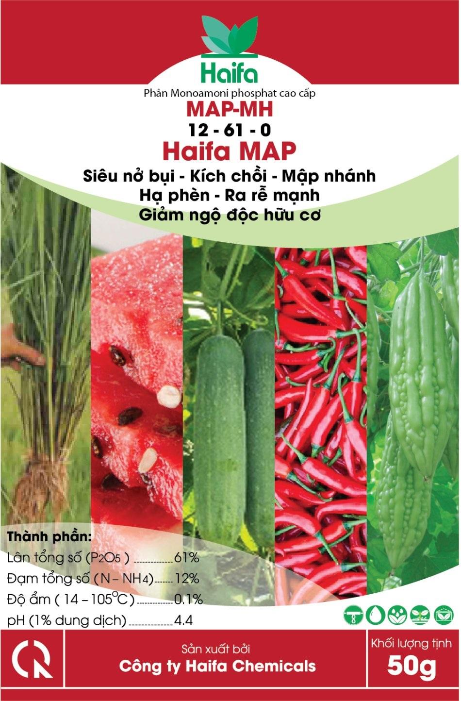 MAP HAIFA ( 12-61- 0)
