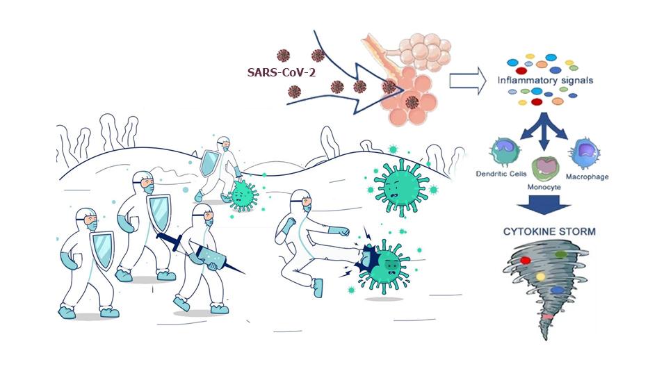 Hội chứng cơn bão Cytokine trong COVID-19 và những điều bạn cần biết