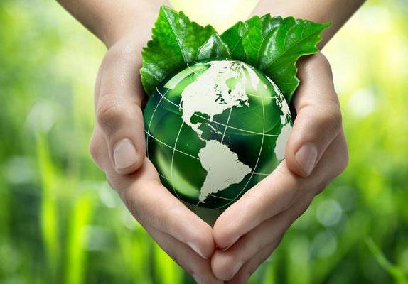 Bắt đầu sống xanh với 9 cách làm giảm rác thải nhựa